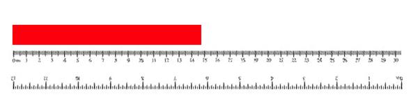 gjennomsnittslengde på penis norsksex