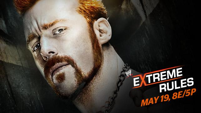 ER 2013 (WWE)