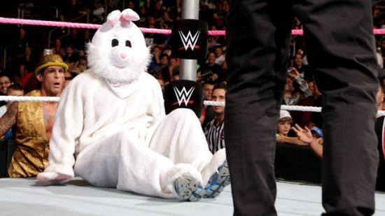 """""""Sorry Bunny,  Party's over!"""" (WWE)"""