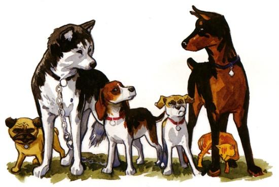 Hovedrolleinnhaverne, fra venstre: Pugsley, Ace, Jack, Whitey og Rex med Orphan mellom bena.