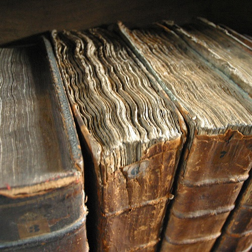 Hver gang du brenner en bok dør en bibliotekar