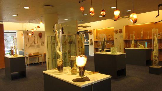 Utstilling en lyssatt blant annet av skrotumslampetter. (Wikipedia)
